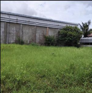 ขายที่ดินอุดรธานี : ขายที่ดินเปล่าขนาด 65 ตร.วา(มี 2 แปลง) ซอยสุขสบายบ้านเลื่อม อำเภอเมืองอุดร