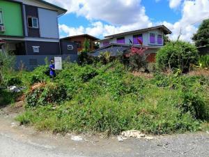 ขายที่ดินบางแค เพชรเกษม : ขายที่ดินเปล่า 50 ตรว. อยู่แยกทศกัณฑ์ บางแวก ซอย 154