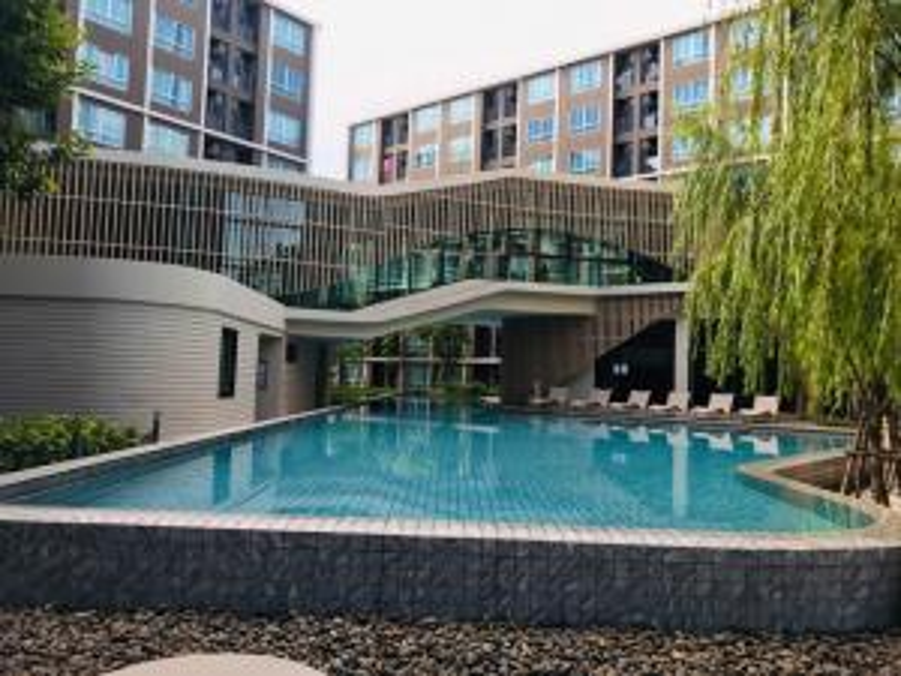 เช่าคอนโดรังสิต ธรรมศาสตร์ ปทุม : Dcondo campus resort dome rangsitห้องสวยวิวสระว่ายน้ำ พร้อมเข้าอยู่