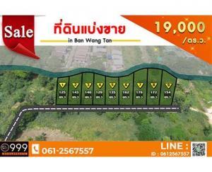 For SaleLandChiang Mai : Land for sale in Ban Wang Tan