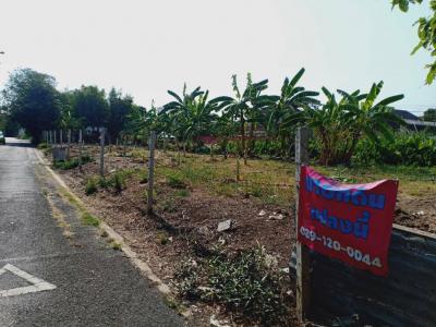 ขายที่ดินปิ่นเกล้า จรัญสนิทวงศ์ : ขายด่วนที่ดินถมปลูกกล้วยเรียบร้อยทั้งแปลง ซื้อลงทุนเสียภาษีอัตราเกษตรกรรม พุทธมณฑลสาย1 ซอย49 เนื้อที่169 ตรว.8.788ล้าน