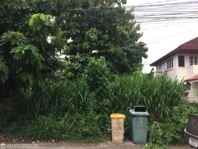 For SaleLandVipawadee, Don Mueang, Lak Si : Land for sale in Sri Saman Road, Soi Sri Saman, 6 Mai Mai Sai Nam Village Area 66 Sq. Selling 45,000 baht per square wah Beautiful land for sale, including 2 deedes near the Red Line BTS, near the expressway.